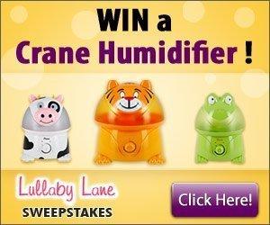Sweepstakes: Win a Crane Humidifier